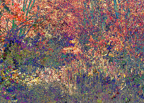Impressionistic Forest by James Hammen