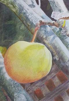 ....In a pear tree by Vera Rodgers