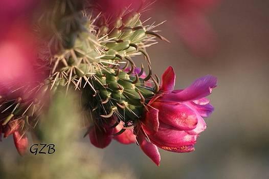 In Bloom by Ken  Myers