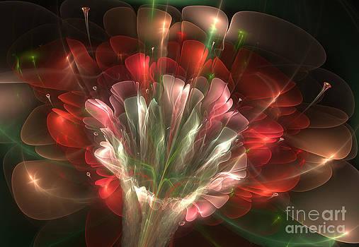 In Bloom by Svetlana Nikolova