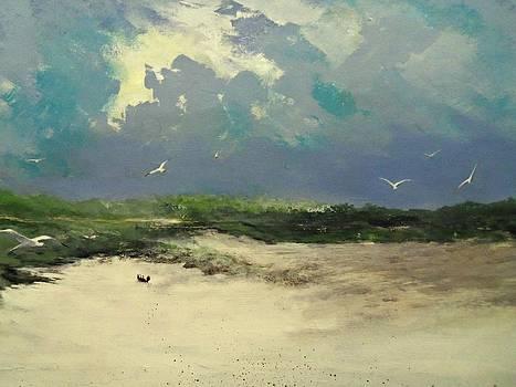 In Flight by James Neeley