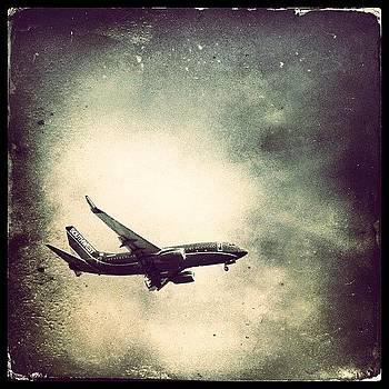 In Flight by Lauren Dsf