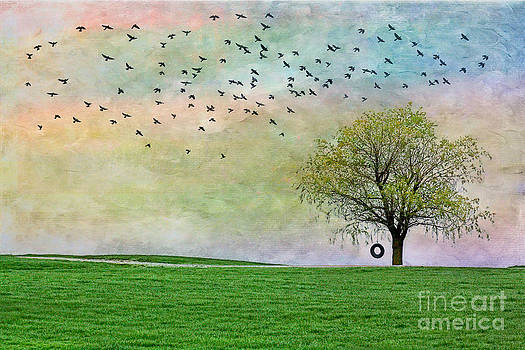 In Green Pastures by Jak of Arts Photography