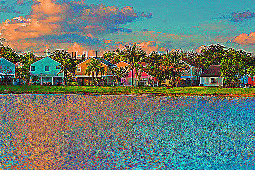 In Living Color by Bob Whitt