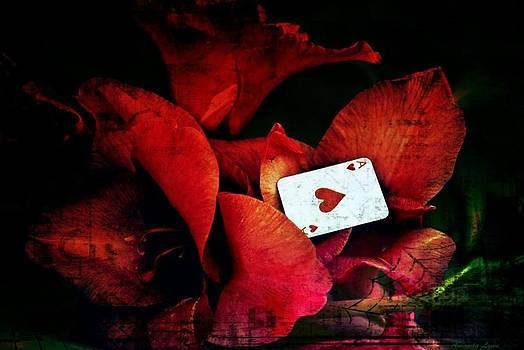 In Red by Amanda Honeycutt