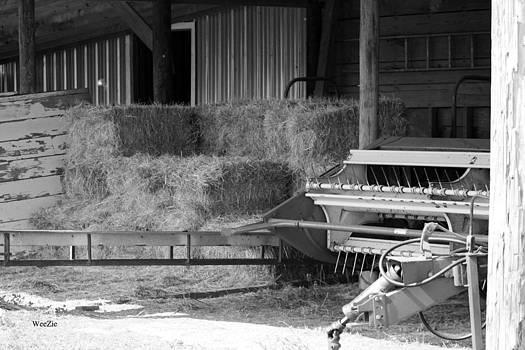 In The Barn by Carolyn Ricks