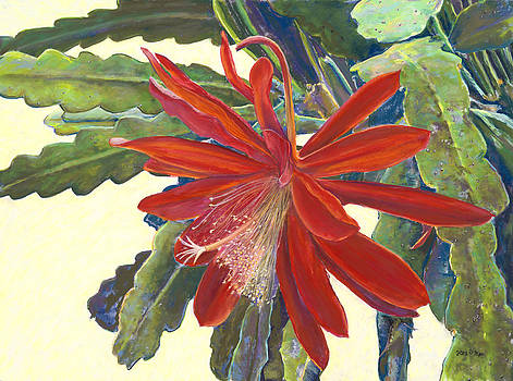 In the Conservatory - 1st Center - Red by Nick Payne