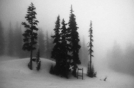 In The Fog by Jean-Francois Bissonnette