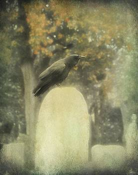 Gothicrow Images - In The Mist Of Fall