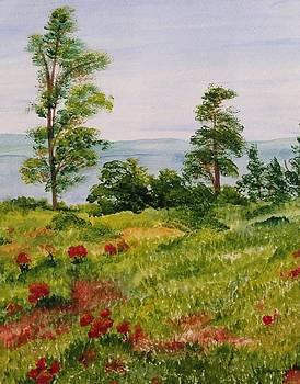 In The Ozarks by Martha Efurd