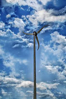 In the Sky by Sheila Carroll
