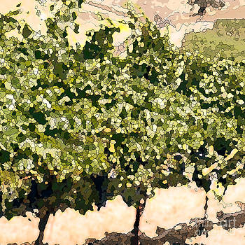 Artist and Photographer Laura Wrede - In the Vineyard