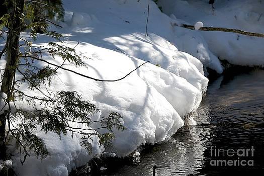 In Winter Sleeps by Joseph Yarbrough