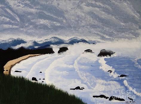 Vicki Maheu - Incoming Storm