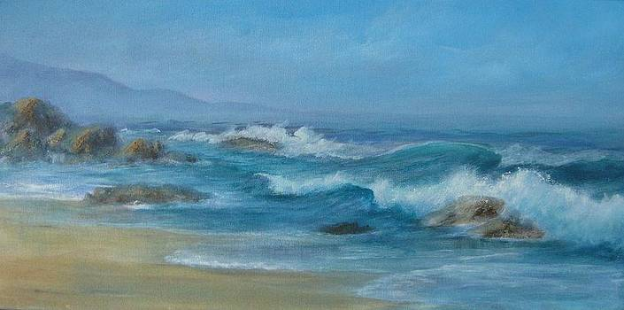 Incoming Tide by Rita Palm