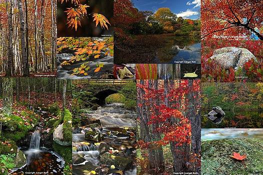Juergen Roth - Incredible New England Fall Foliage Photography