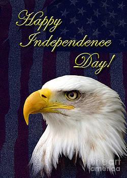 Jeanette K - Independence Day Eagle