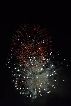 Independence Day by Jennifer Zirpoli