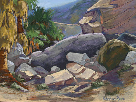 Indian Canyon Afternoon by Patricia Rose Ford
