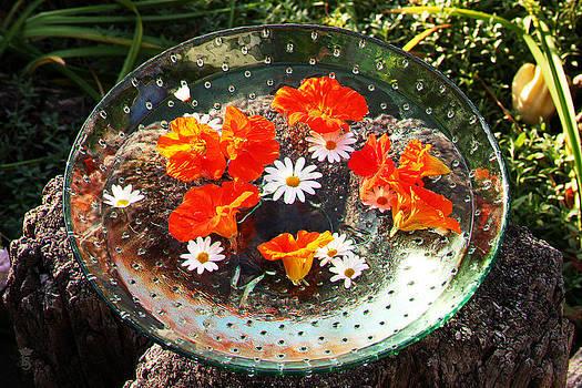 Indian summer in my garden 03 by Li   van Saathoff