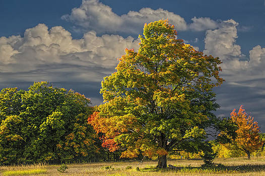 Randall Nyhof - Indian Summer
