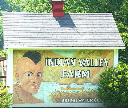 Indian Valley Farm by Stephen Melcher