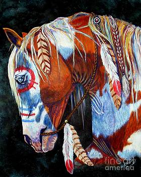 Indian War Pony by Amanda Hukill