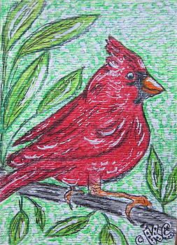 Indiana Cardinal Redbird by Kathy Marrs Chandler
