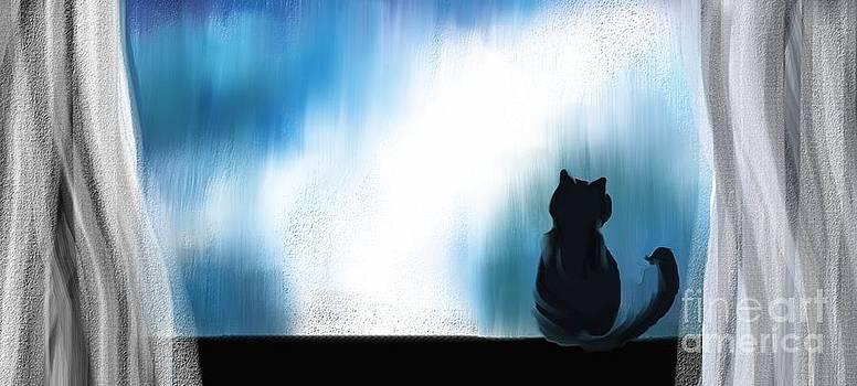 Indoor Cat by Hilda Lechuga