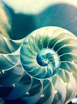 Infinity  by Natalya Karavay