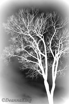 Inflared Tree by Deanna King