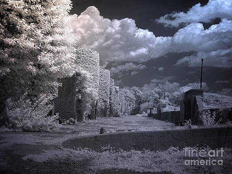 Infrared photography Washington D.C by Heinz G Mielke