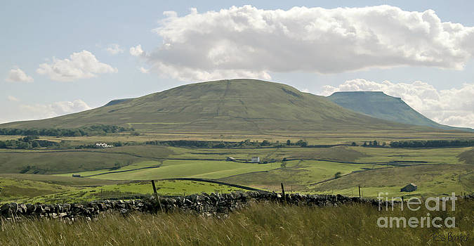 Ingleborough from Ribblehead by Tess Baxter