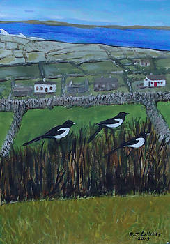 Inis Meain 7 Magpies by Roland LaVallee