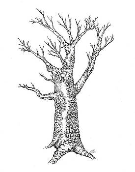 Ink Tree by Tanya Hamell