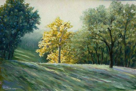 Inks Lake Morning by Regina Calton Burchett