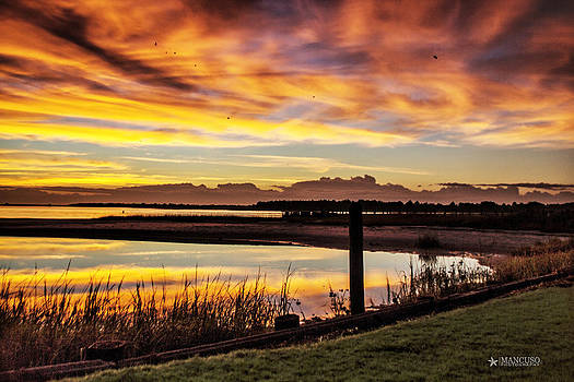 Inlet Watch Sunrise by Phil Mancuso