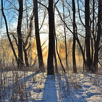 Frozen in Time Fine Art Photography - Inner Heat