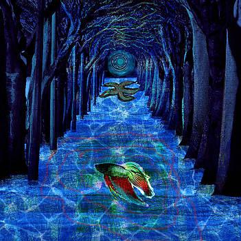 Inner woods by Maria Jesus Hernandez