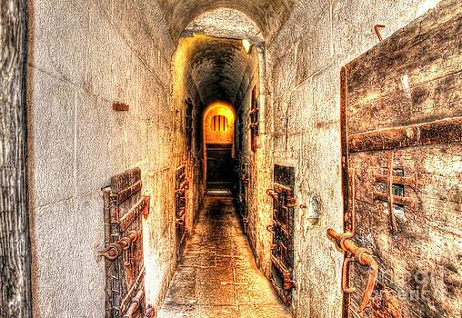 Ines Bolasini - Inside the Bridge of Sighs
