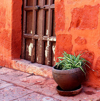 Inside the walls of Santa Catalina by Nathalie Deslauriers