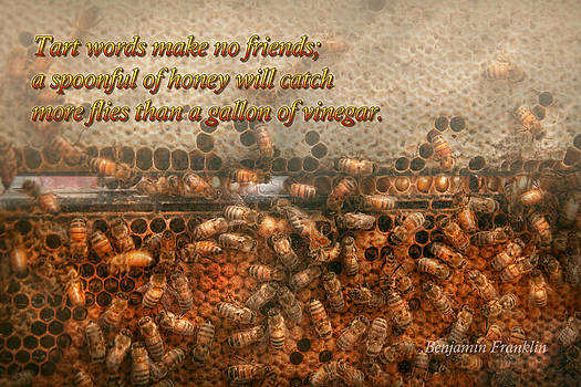 Mike Savad - Inspiration - Apiary - Bee