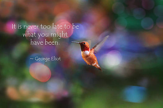 Peggy Collins - Inspirational Hummingbird