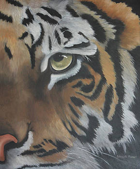 INTENSITY-Siberian Tiger by Patricia Mansell