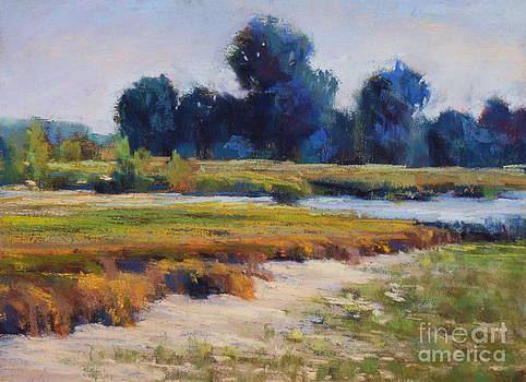 Inter-coastal by Virginia Dauth