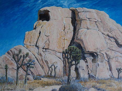 Sandra Lytch - Intersecting Intersection Rock