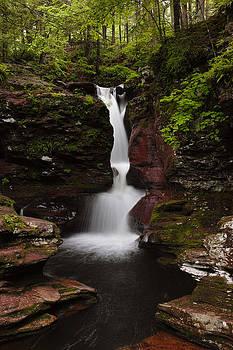 Intimacy - Adams Falls by Tim Devine