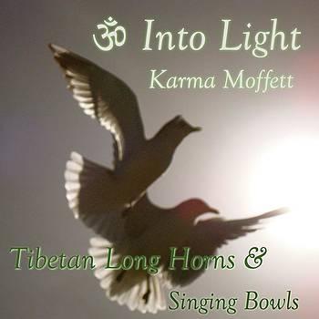 Into Light by Karma Moffett