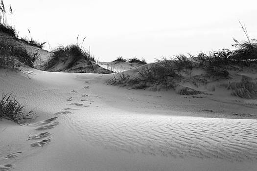 Into The Dunes by Brad Emerick