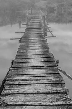 Roger Mullenhour - Into The Fog
